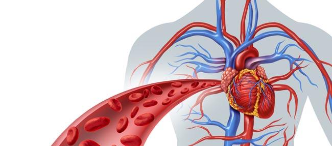 افزایش گردش خون از مزایای برهنه خوابیدن زوجین - قلقلی خان