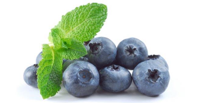 درمان زود انزالی مردان با میوه بلوبری - قلقلی خان