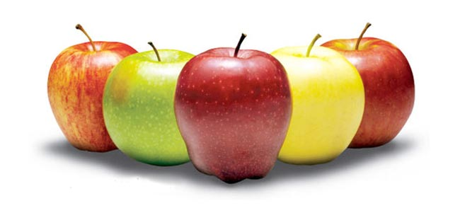 درمان زود انزالی مردان با میوه سیب - قلقلی خان