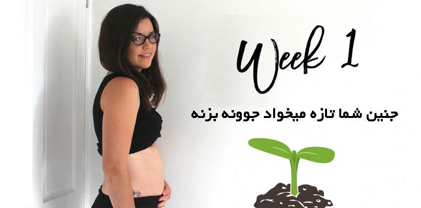 وضعیت مادر در هفته اول بارداری - قلقلی خان